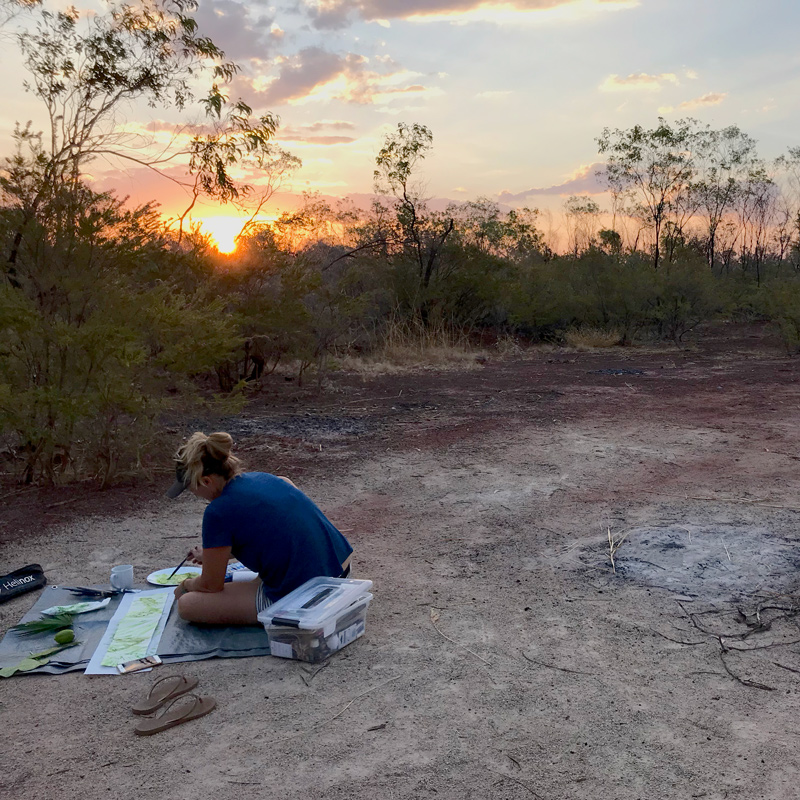 Narelle Hallam, watercolour painting on location in the Northern Territory